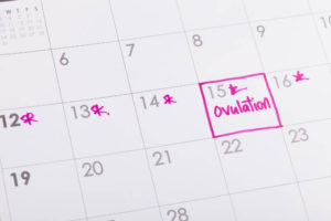 Read more about the article Are you seeking to conceive? Know your ovulation first.